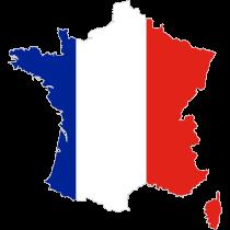 Франко-русский/русско-французский